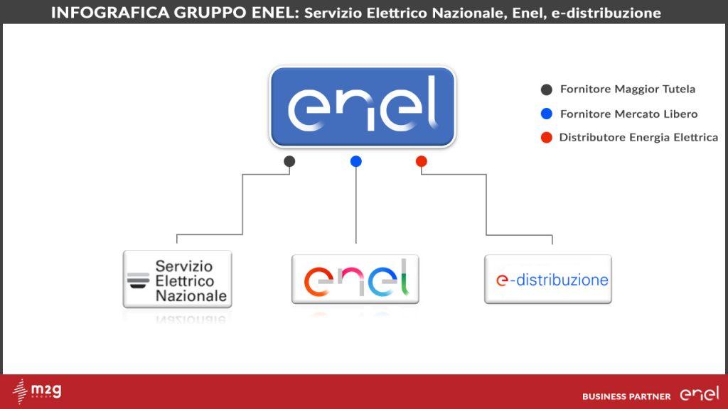 differenza tra enel e servizio elettrico nazionale